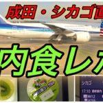 【ANA 全日空】機内食レポ 国際線 成田-シカゴ直行便  エコノミークラス #35